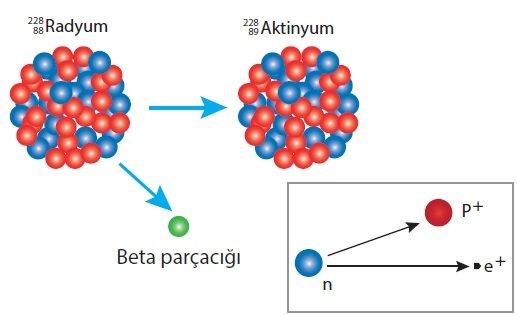 Radyum Çekirdeği Beta Bozunumu