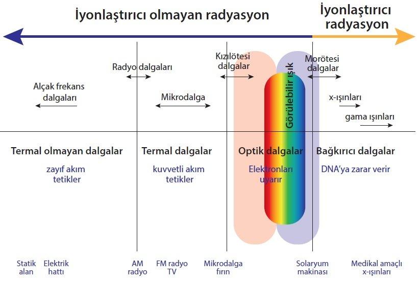 İyonlaştırıcı ve İyonlaştırıcı Olmayan Radyasyon Etkileri